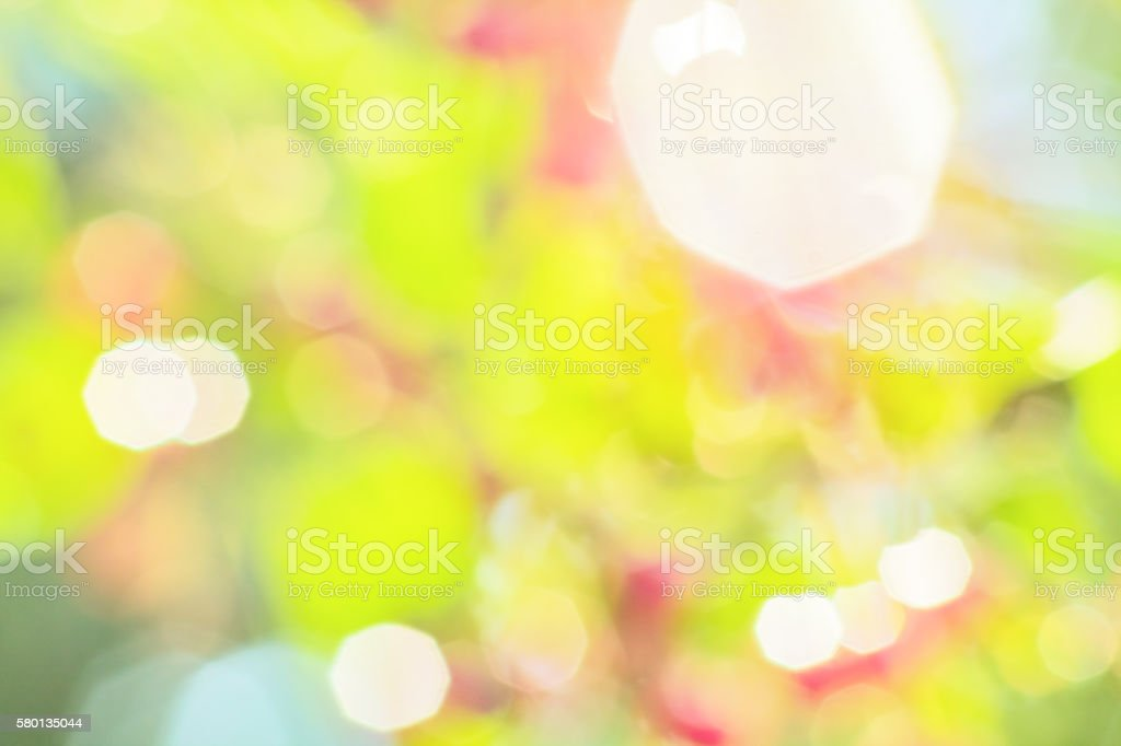 Multicolored blurred abstract background of a summer garden stock photo