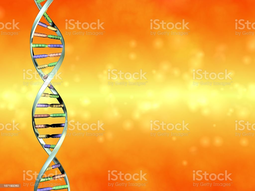 Multicolored DNA strand on an orange background stock photo