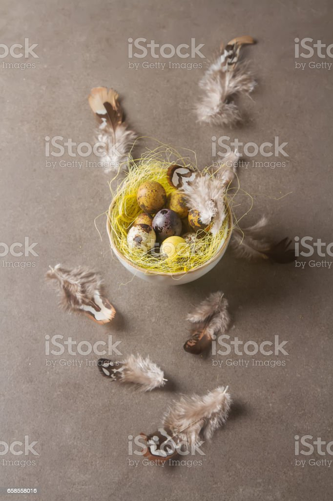 Multi-colored Easter egg. Quail eggs in a nest with feathers. Da stock photo