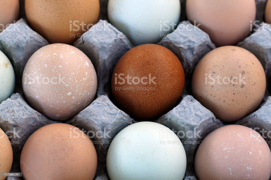multi-colored eggs royalty-free stock photo