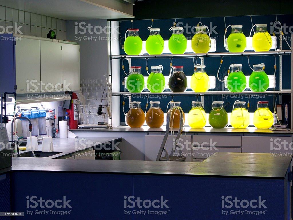 Multicolored flasks illuminated in a small laboratory stock photo