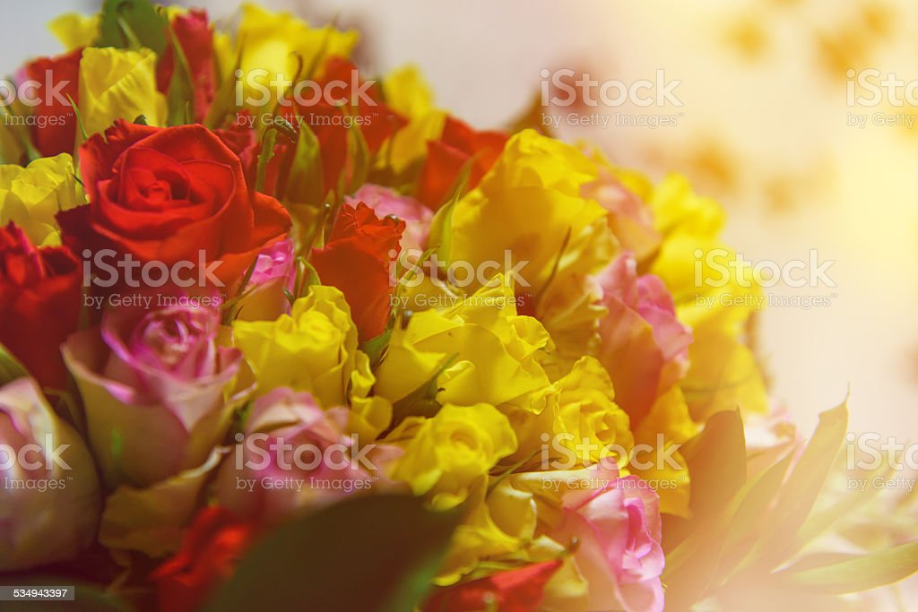 multicolored flower bouquet stock photo