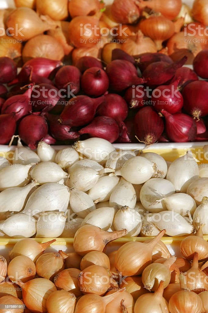 Multi-colored Onions royalty-free stock photo