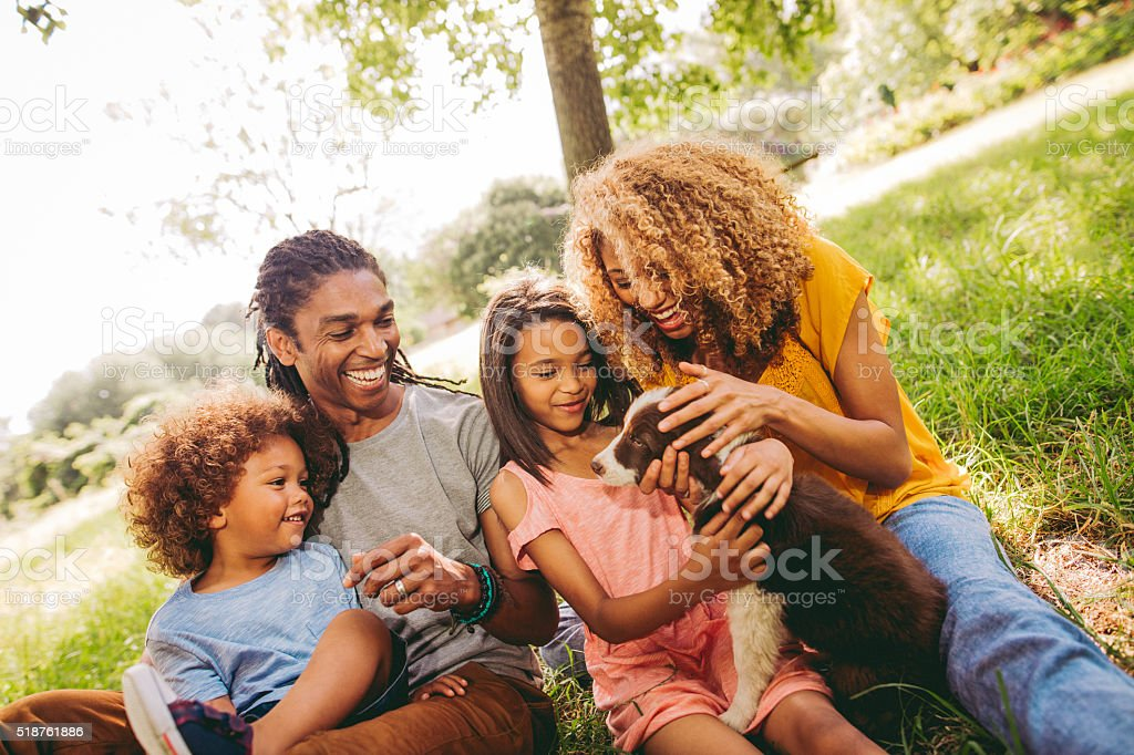 Multi-ethnic family spending time at park with new adorable pet stock photo