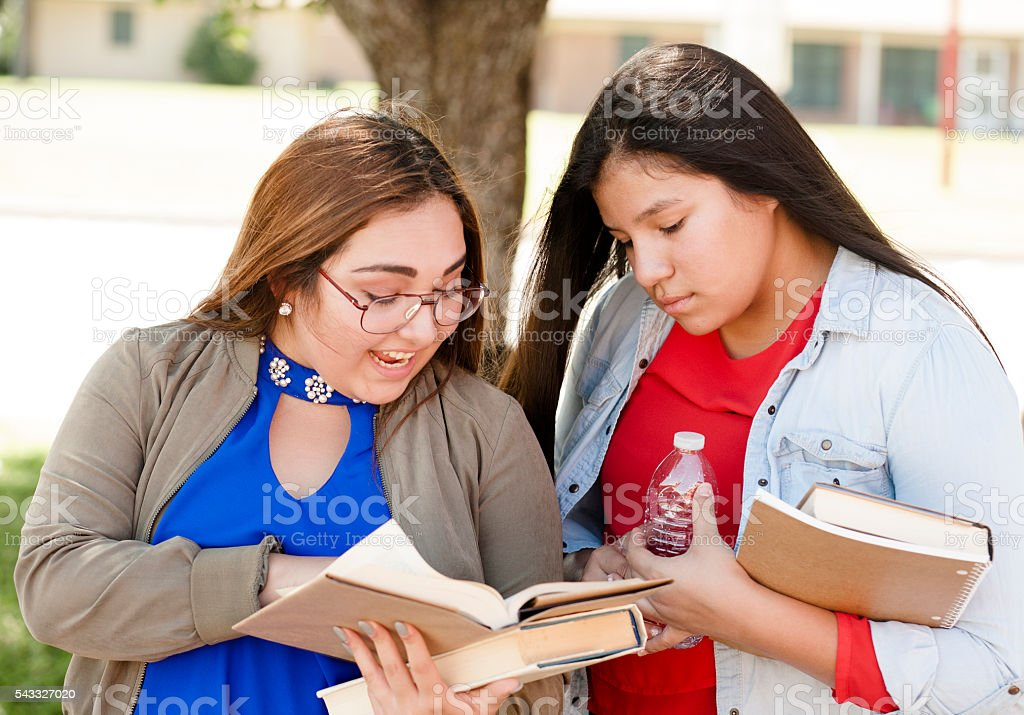 Multi-ethnic group of high school or college girls talking.  Campus. stock photo