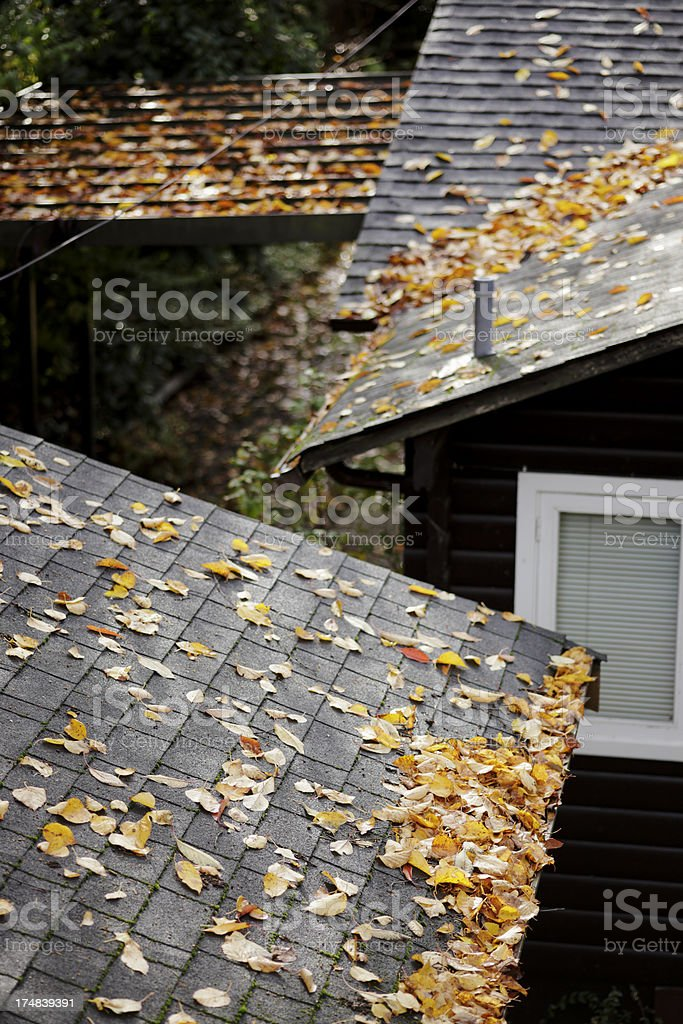 multiple roofs covered with fallen leaves royalty-free stock photo