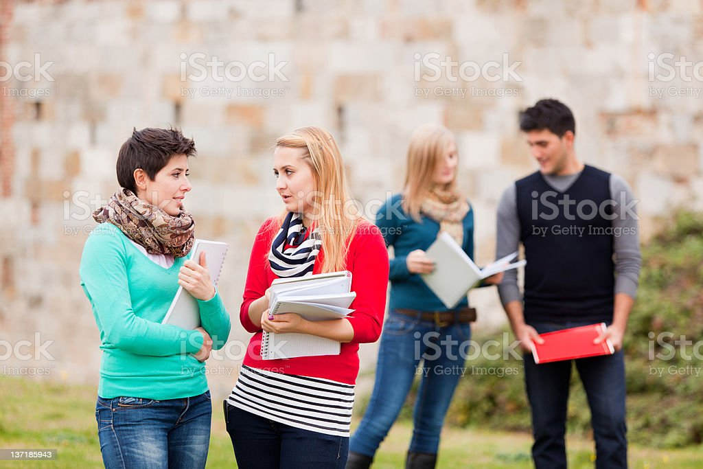 Multiracial College Students royalty-free stock photo