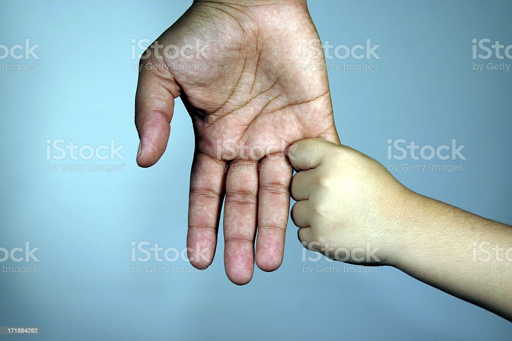 Multi-Racial Parent and Child Hands royalty-free stock photo