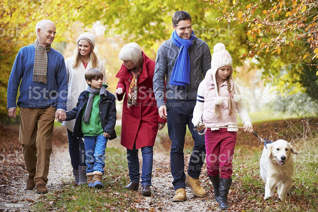 Multl Generation Family Walking Along Autumn Path With Dog stock photo
