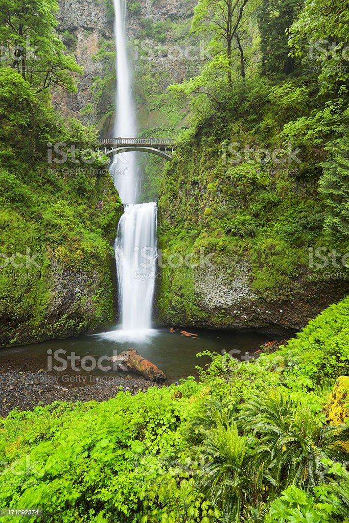 Multnomah Falls in the Columbia River Gorge, Oregon, USA stock photo