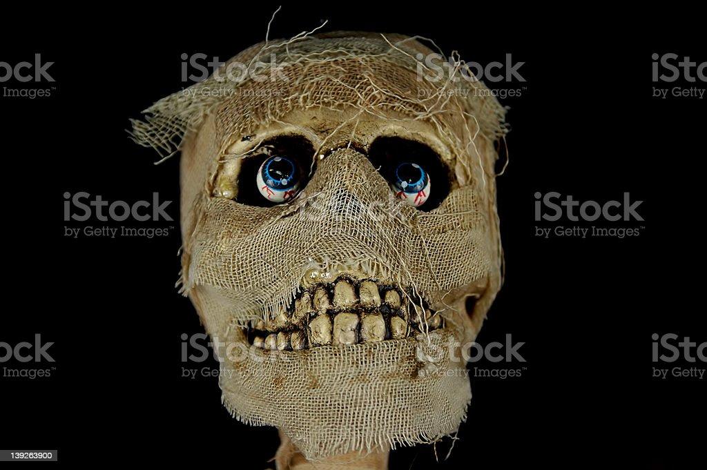 Mummy Head royalty-free stock photo