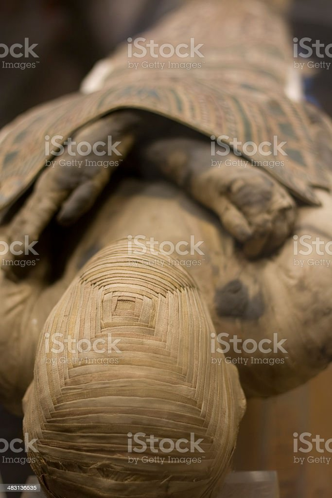 Mummy royalty-free stock photo