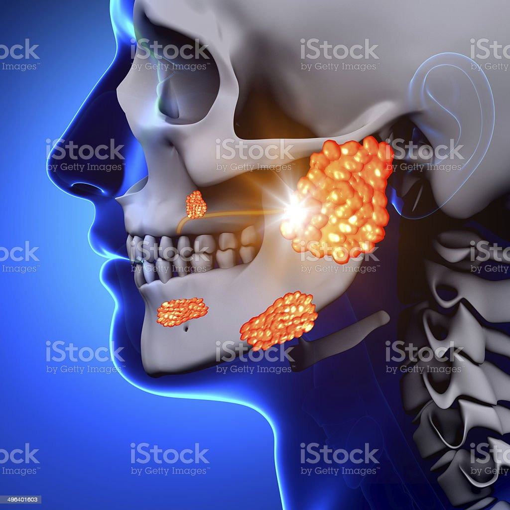 Mumps / Parotid Gland - Sickness stock photo