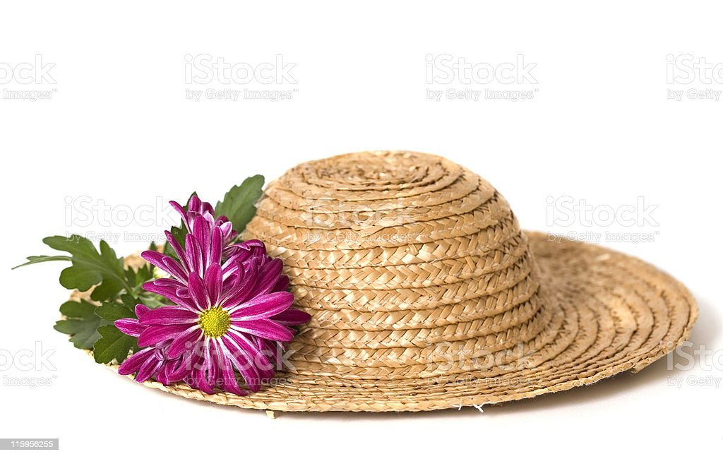 Mums on a Straw Hat stock photo