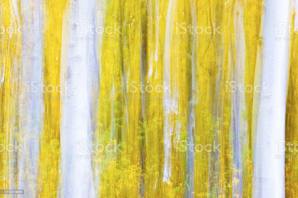 Munch's Aspens stock photo