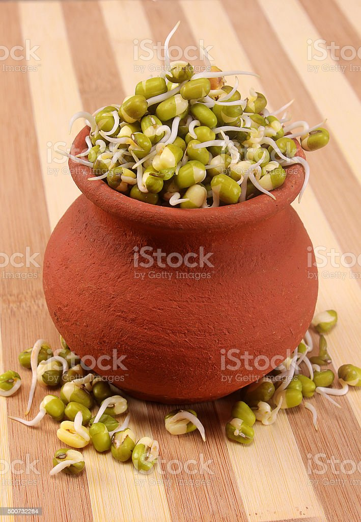 mung bean sprouts on pot with wooden backdrop stock photo