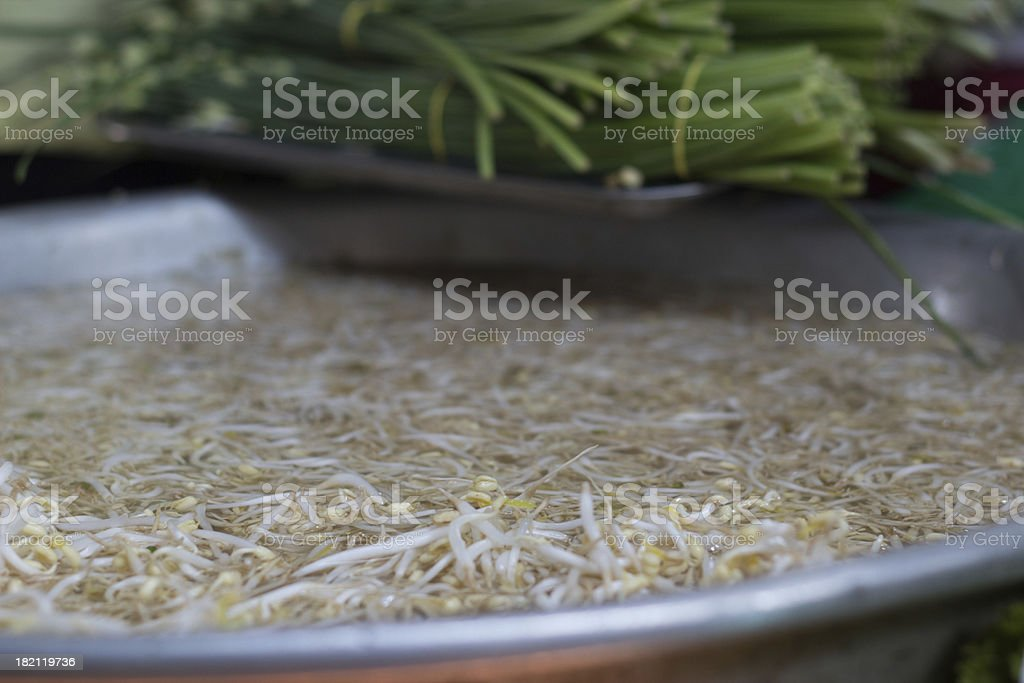 Mung bean sprouts royalty-free stock photo