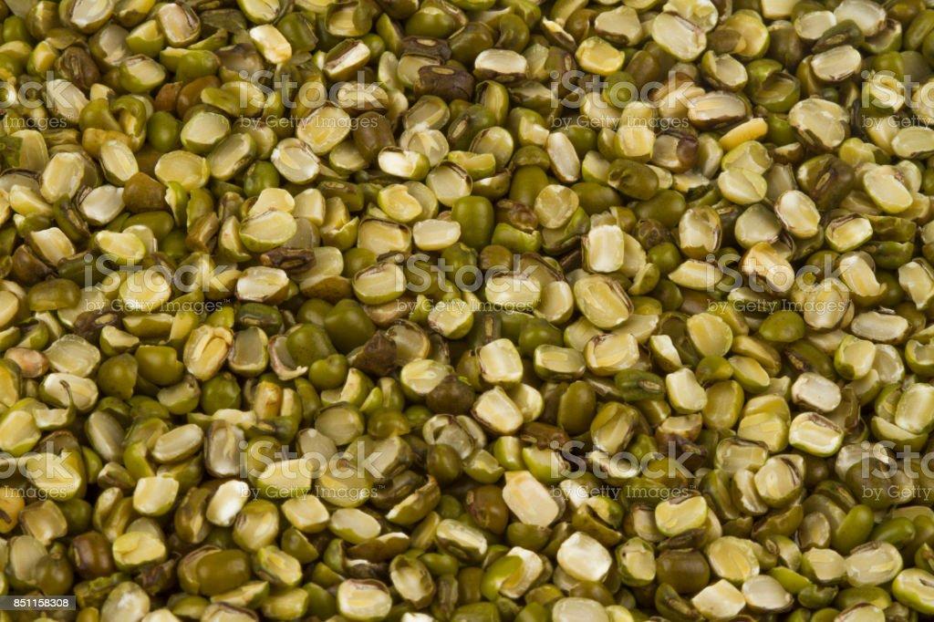 Mung beans stock photo