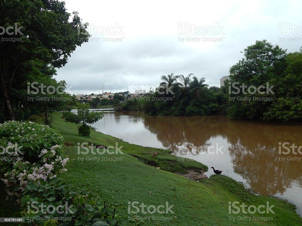 Presa Municipal de San José hacer Rio Preto foto de stock libre de derechos