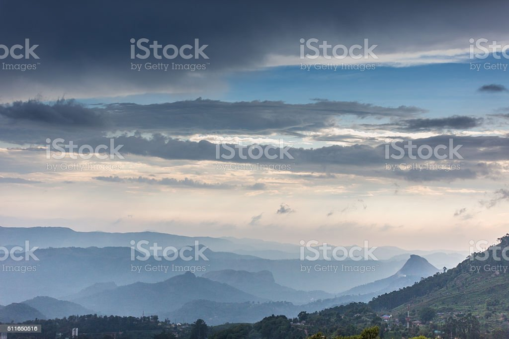 Munnar stock photo