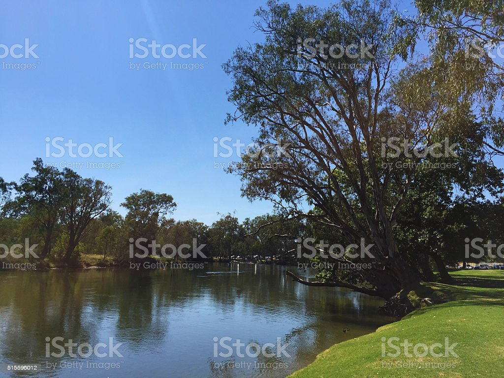 Murray River at Noreuil Park, Albury, NSW, Australia stock photo