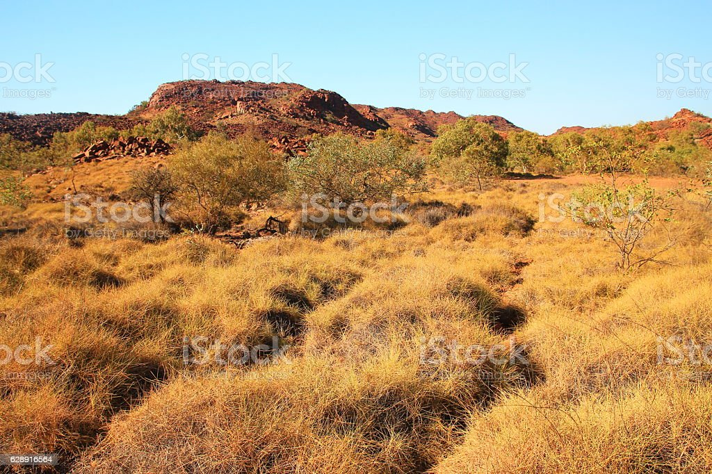 Muruguja national park, Australia stock photo