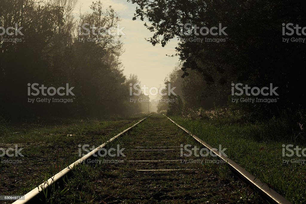 Murwillumbah railway line stock photo