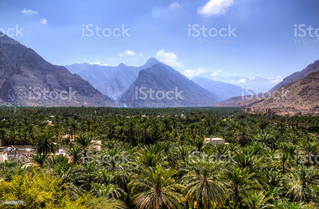 Muscat Oasis stock photo