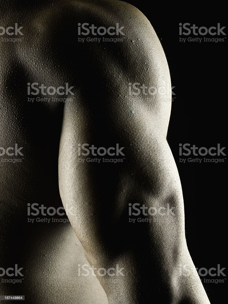 Muscle Build royalty-free stock photo