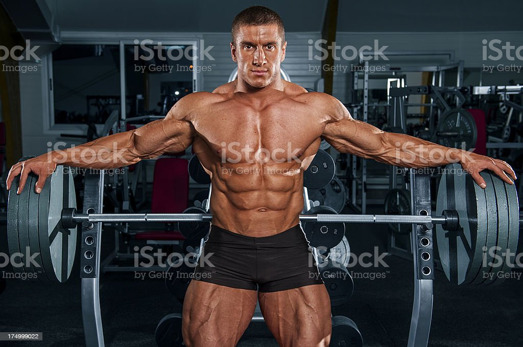 muscle wings stock photo 174999022 | istock, Muscles