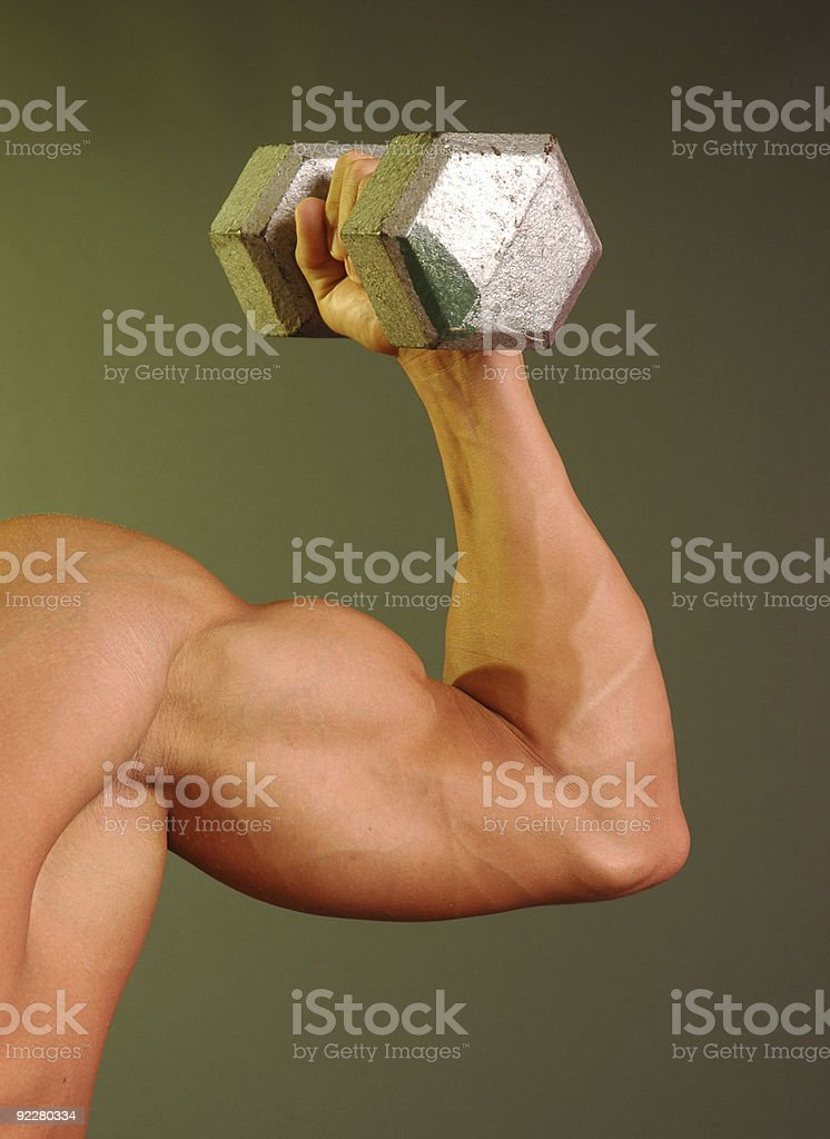 muscled arm holding twenty pound weight royalty-free stock photo