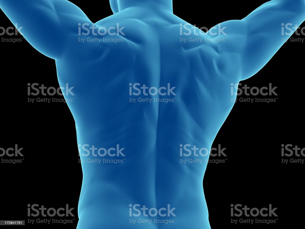 Muscular back of a man with arms over his head royalty-free stock photo