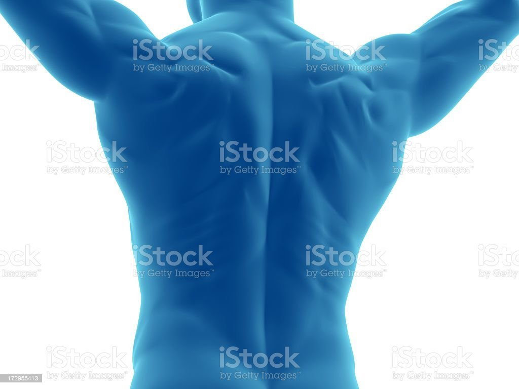 Muscular back of a man with arms over his head stock photo