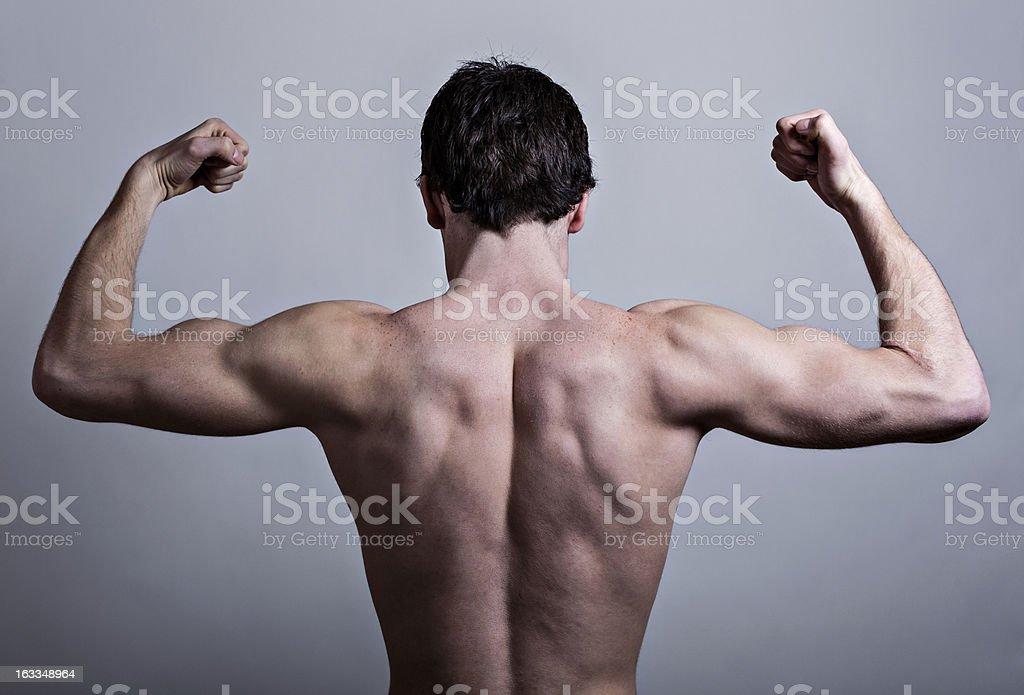 Espalda Muscular foto de stock libre de derechos