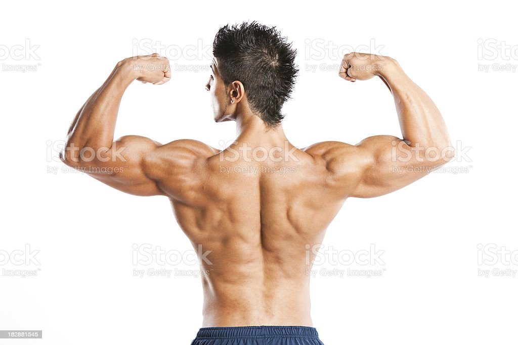 Muscular back royalty-free stock photo