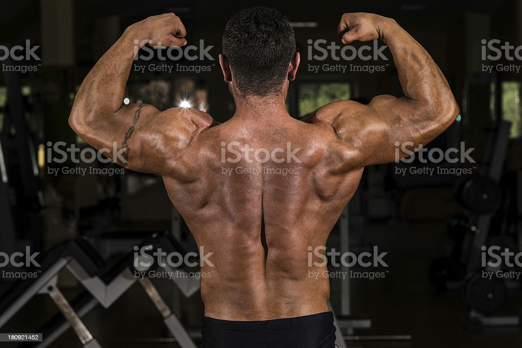 muscular bodybuilder showing his back double biceps royalty-free stock photo
