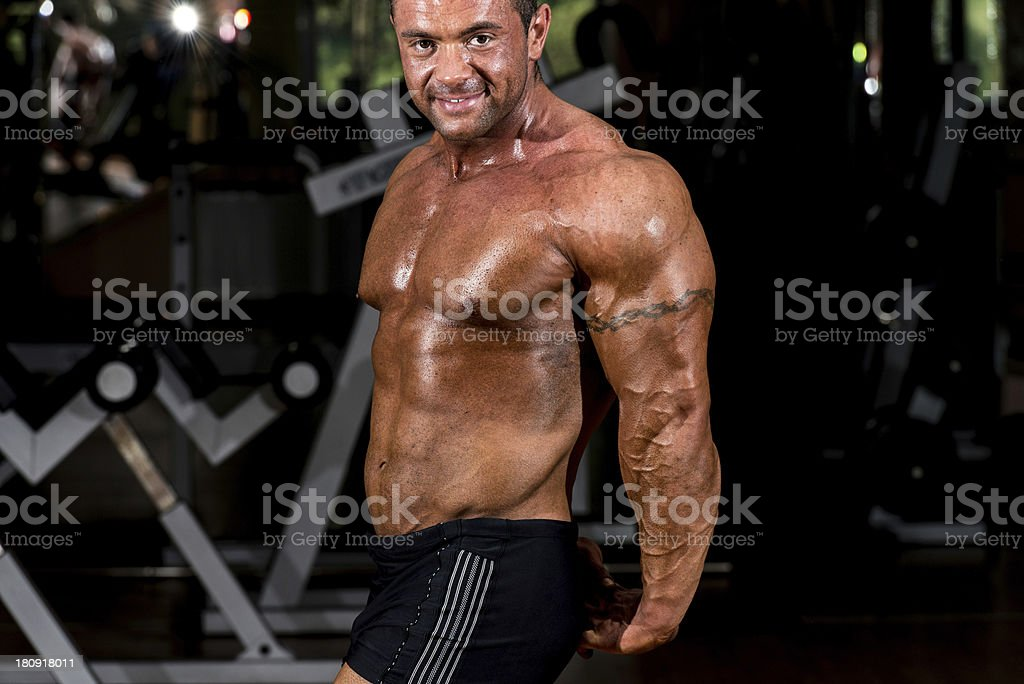 muscular bodybuilder showing his side triceps royalty-free stock photo