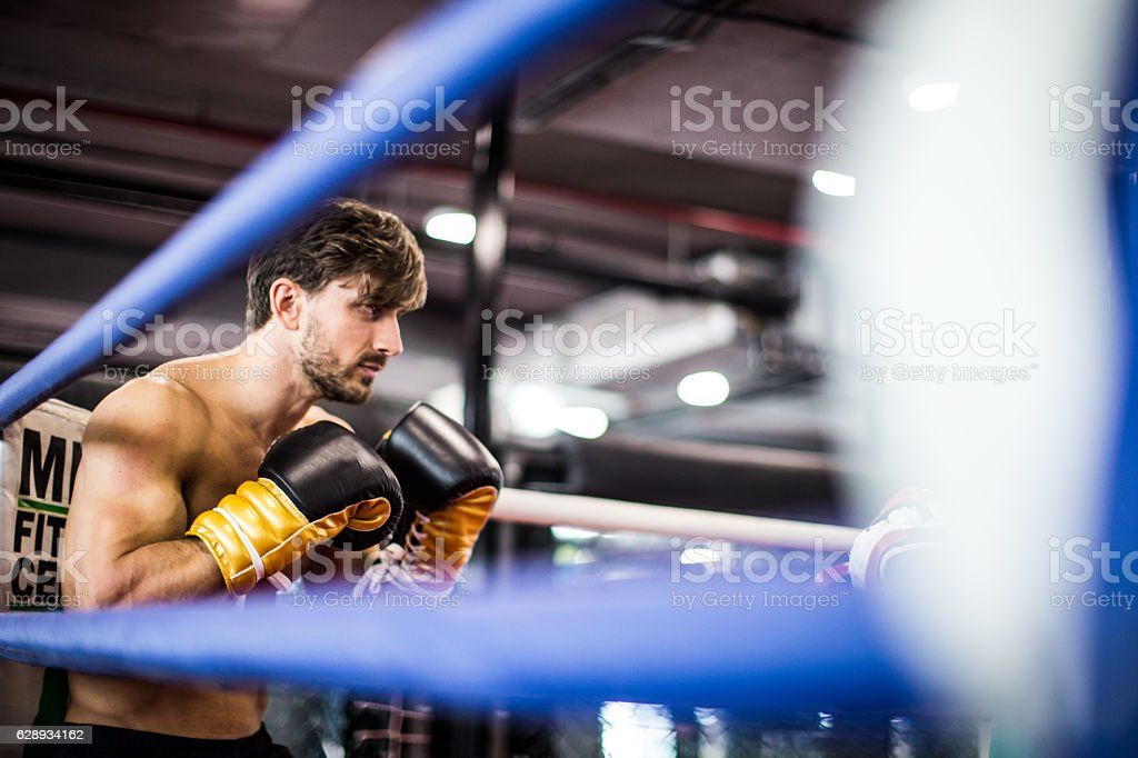 Muscular Boxer In a Guard Stance During a Sparring Session stock photo