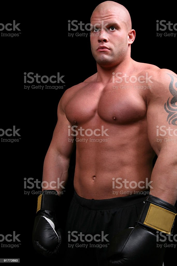 Muscular boxer royalty-free stock photo