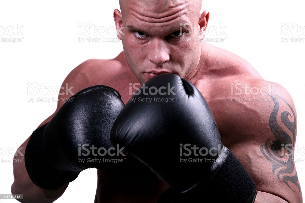 Muscular boxer portrait royalty-free stock photo