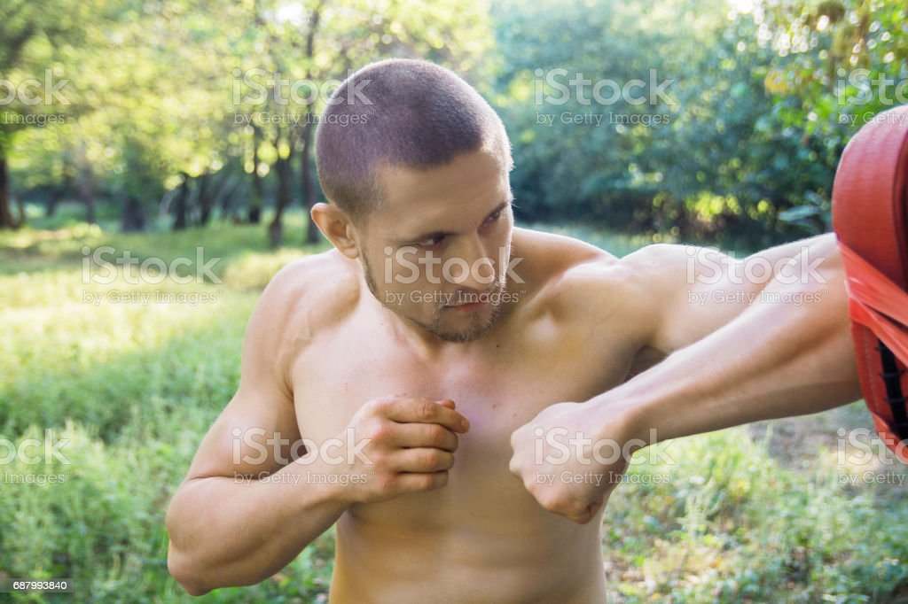 A muscular boxer trains in nature stock photo
