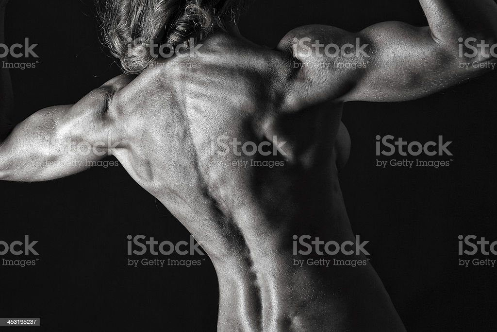 Muscular female torso royalty-free stock photo