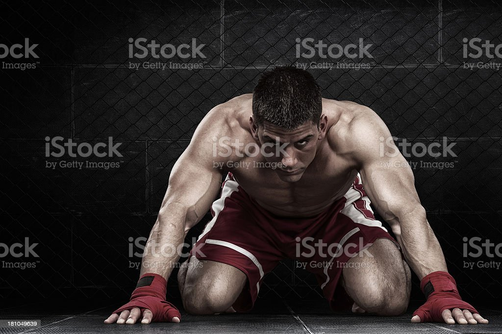 Muscular male athlete prepares for competition royalty-free stock photo