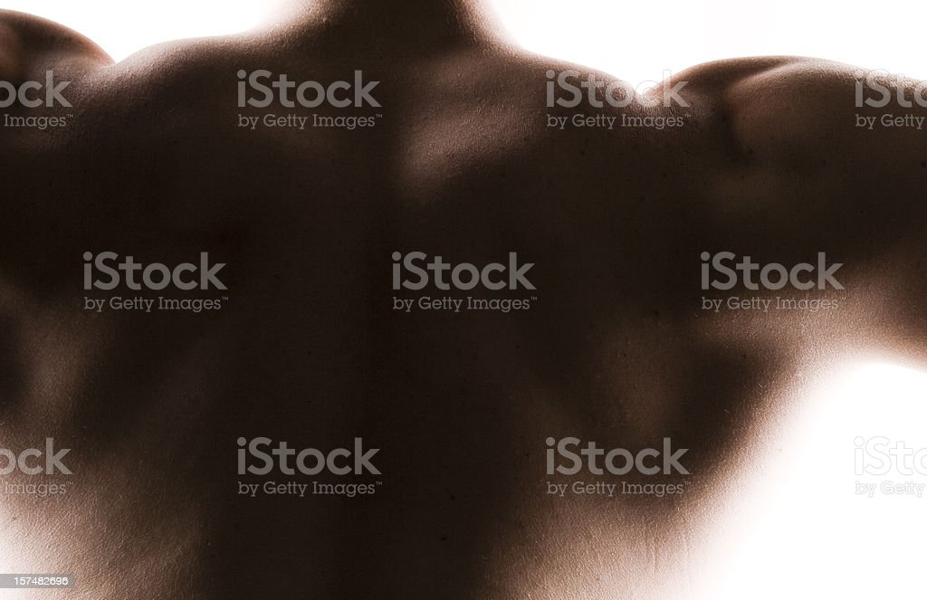 Muscular male back royalty-free stock photo