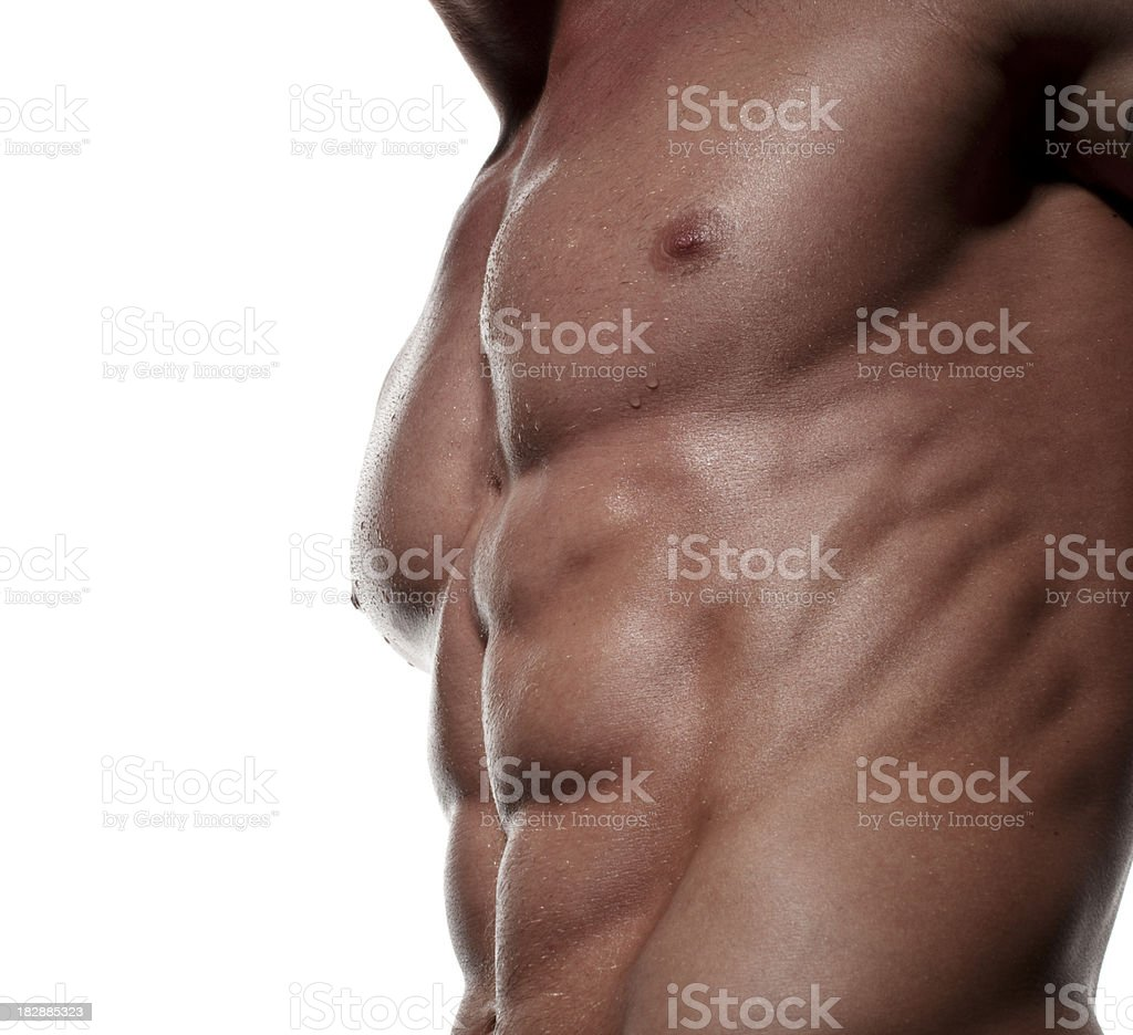 Muscular Male Torso against white royalty-free stock photo