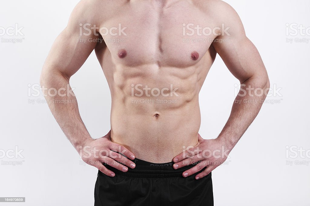 Muscular Male Torso royalty-free stock photo