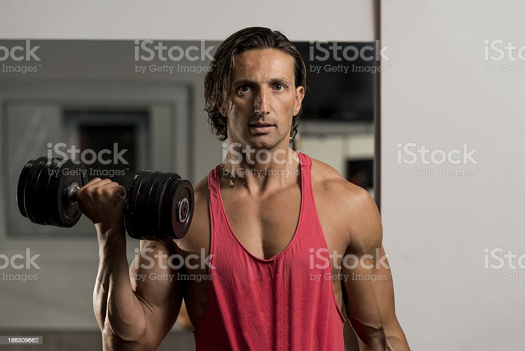 Muscular Man Exercising In Gym royalty-free stock photo