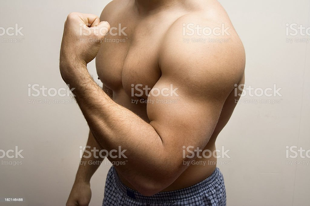 Muscular stock photo