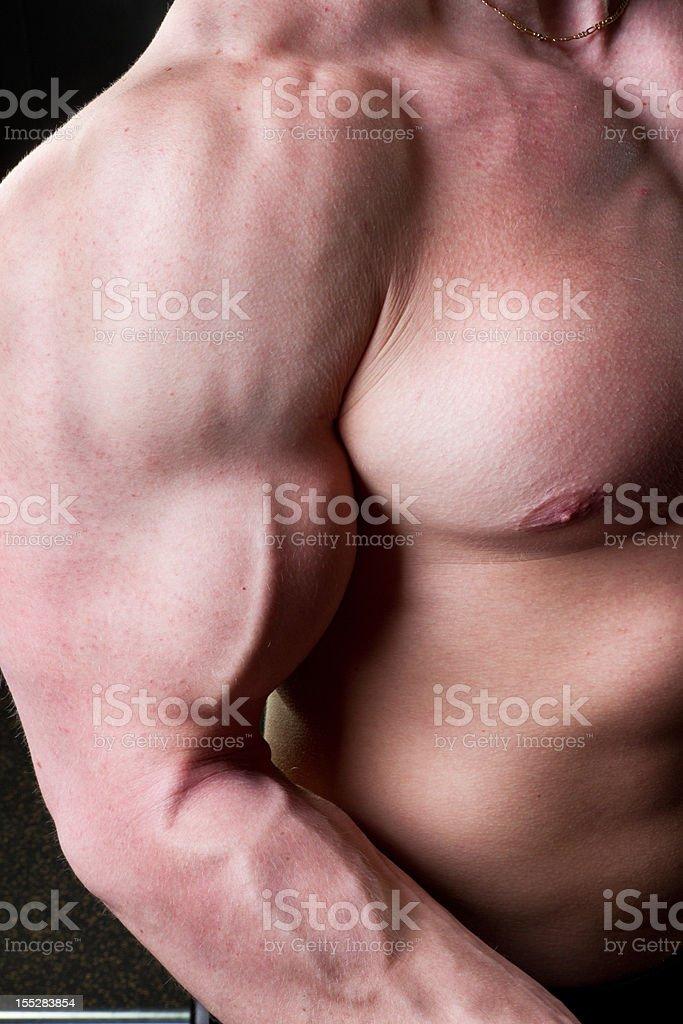 Muscular Torso royalty-free stock photo