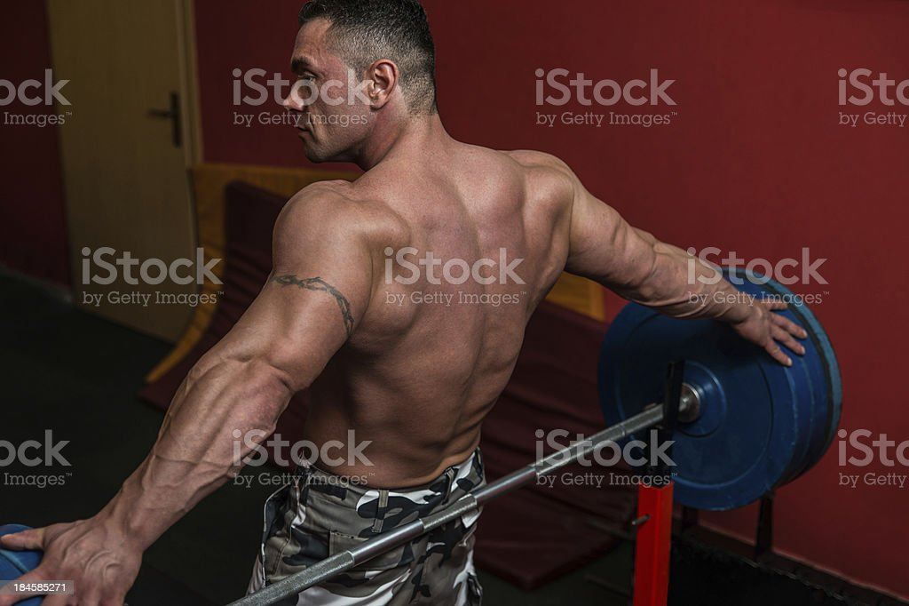 Muscular Wings royalty-free stock photo